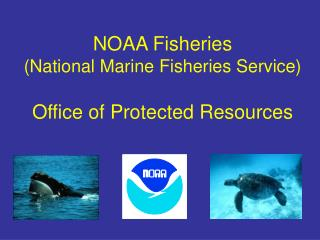 NOAA Fisheries  (National Marine Fisheries Service) Office of Protected Resources