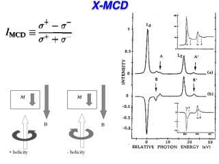X-MCD