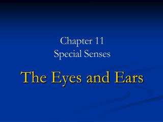 Chapter 11 Special Senses