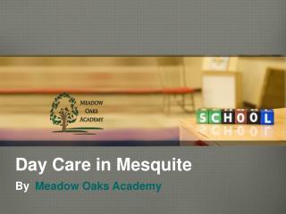 Day Care in Mesquite - Meadowoaksacademy.com
