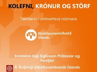 Þorsteinn Ingi Sigfússon Prófessor og Forstjóri Á Ársþingi Alþýðusambands Íslands