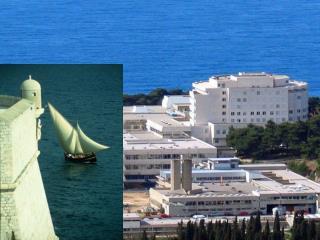 Opća  bolnica Dubrovnik      u 2008. godini
