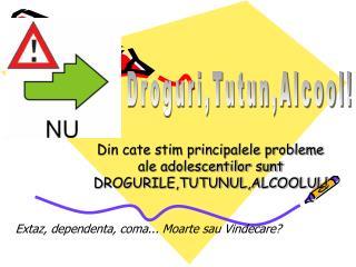 Din cate stim principalele probleme ale adolescentilor sunt DROGURILE,TUTUNUL,ALCOOLUL!