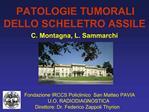 C. Montagna, L. Sammarchi      FONDAZIONE IRCCS                         Fondazione IRCCS Policlinico  San Matteo PAVIA