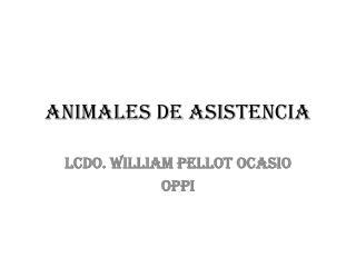 ANIMALES DE ASISTENCIA