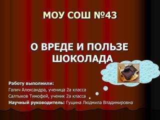 МОУ СОШ №43