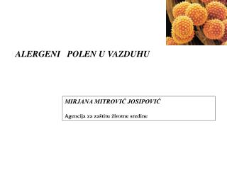 ALERGEN I    POLEN  U VAZDUHU