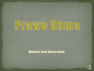 Wykonał: Ariel Gruszczyński