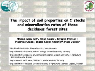 The impact of soil properties on C stocks and mineralization rates of three deciduous forest sites