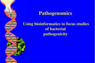 Pathogenomics  Using bioinformatics to focus studies of bacterial pathogenicity