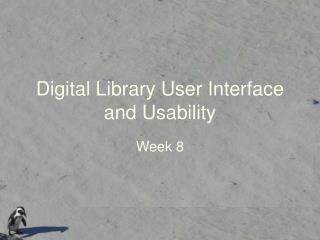 Digital Library User Interface and Usability