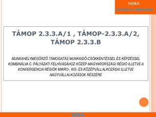 TÁMOP 2.3.3 célja