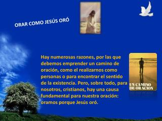 ORAR COMO JESÚS ORÓ