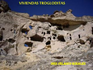 INES VELASCO ROSALES