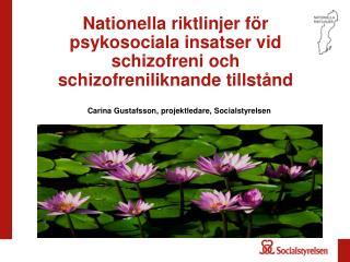 Nationella riktlinjer för psykosociala insatser vid schizofreni och schizofreniliknande tillstånd