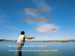 Orange Activity in Content Adaptation