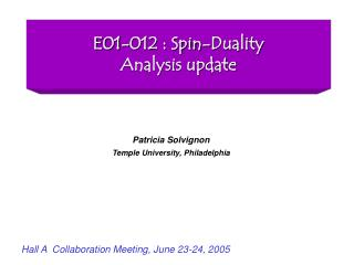 E01-012 : Spin-Duality Analysis update