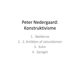 Peter Nedergaard: Konstruktivisme