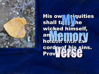 My Memory Verse