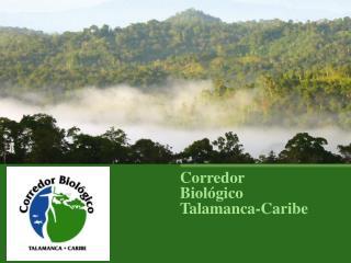 Corredor Biológico Talamanca-Caribe