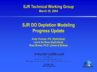 SJR Technical Working Group March 25, 2004