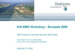 ICG-EMO Workshop � Brussels 2009