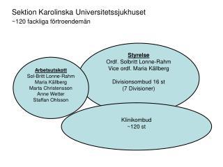 Styrelse Ordf. Solbritt Lonne-Rahm Vice ordf. Maria Källberg Divisionsombud 16 st (7 Divisioner)