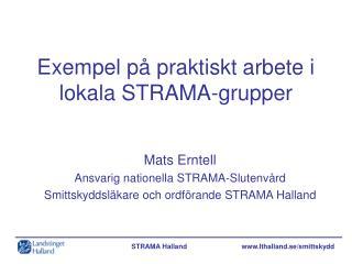 Exempel p� praktiskt arbete i lokala STRAMA-grupper