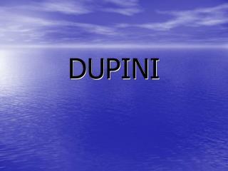DUPINI