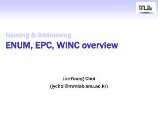 Naming & Addressing ENUM, EPC, WINC overview