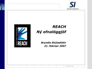 REACH Ný efnalöggjöf Bryndís Skúladóttir 21. febrúar 2007