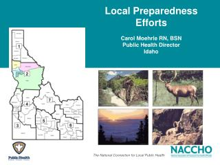 Local Preparedness Efforts  Carol Moehrle RN, BSN Public Health Director Idaho