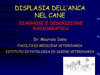 DISPLASIA DELL'ANCA NEL CANE