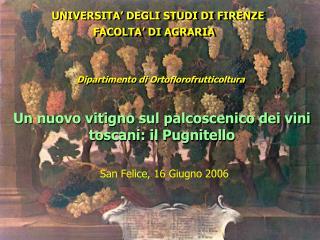 UNIVERSITA' DEGLI STUDI DI FIRENZE