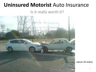 Uninsured Motorist  Auto Insurance