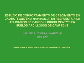 HACIENDA: DZIDZILA, CAMPECHE 2006-2007 INVESTIGACION REALIZADA POR: ING RODOLFO PINZON LIZARRAGA