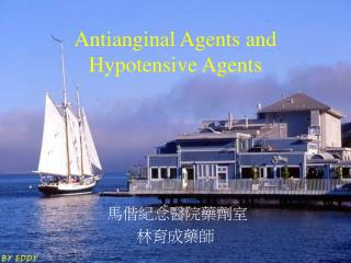 Antianginal Agents and Hypotensive Agents