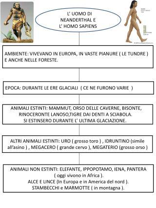 L' L' UOMO DI NEANDERTHAL E L' HOMO SAPIENS