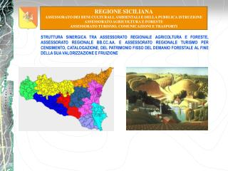 REGIONE SICILIANA ASSESSORATO DEI BENI CULTURALI, AMBIENTALI E DELLA PUBBLICA ISTRUZIONE
