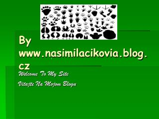 By  nasimilacikovia.blog.cz