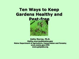 Ten Ways to Keep Gardens Healthy and Pest-free