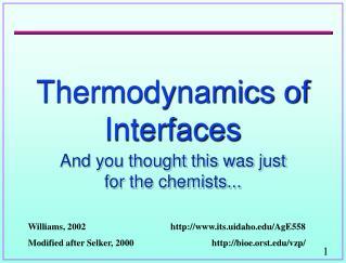 Thermodynamics of Interfaces