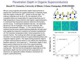Penetration Depth in Organic Superconductors