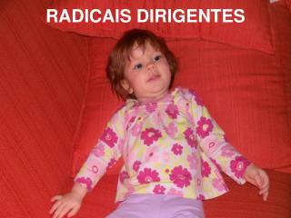 RADICAIS DIRIGENTES