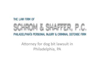 The Law Firm of Schrom & Shaffer, P.C. - Attorney for dog bi