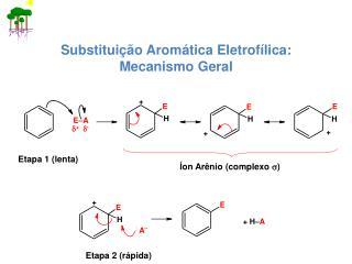 Substituição Aromática Eletrofílica: Mecanismo Geral