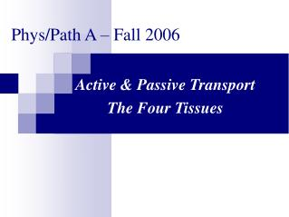 Phys/Path A – Fall 2006