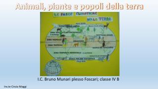 I.C. Bruno Munari plesso Foscari; classe IV B