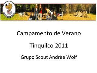 Campamento de Verano Tinquilco 2011 Grupo Scout Andrèe Wolf