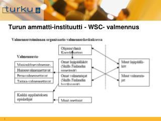 Turun ammatti-instituutti - WSC- valmennus